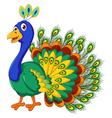 cute Peacock cartoon posing vector image