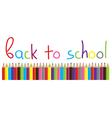 pencils school vector image