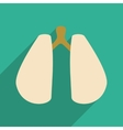 Flat with shadow icon and mobile application lungs vector image