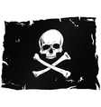 Pirate flag with skull vector image