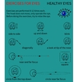 Healthy eyes Infographics vector image