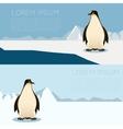 Antarctic banner2 vector image vector image