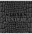 Stones texture vector image