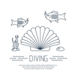 Diving icon with shell and fishs vector image