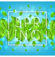 Spring nature banner with leafs vector image