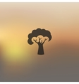 tree icon on blurred background vector image