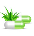 natural pills vector image vector image