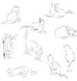Cats sketches set vector image