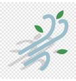 wind isometric icon vector image