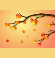autumnal forest with falling maple leaves vector image