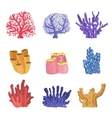 Different Types Of Tropical Reef Coral Collection vector image