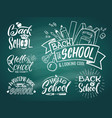 vintage emblem set for school and university vector image