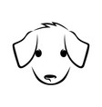 cute puppy face on white vector image