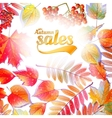 Autumn Calligraphy sale on detailed leafs vector image