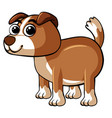 cute dog with happy face vector image