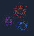 colorful firework on dark vector image