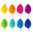 set of colored leaves vector image vector image