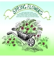 carriage with flowers vector image