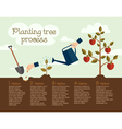 Planting tree process vector image