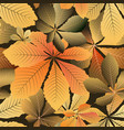 yellow leaves pattern vector image