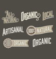 Set of 6 Organic Natural Food Labels with vintage vector image vector image