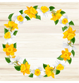 Daffodils frame vector image vector image