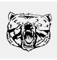 bear 01 vector image