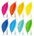 set of colored leaves vector image
