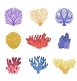 Different Types Of Tropical Reef Coral Set vector image vector image