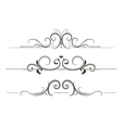 Swirly Divider vector image