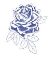 blue rose vector image