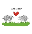 Love sheep vector image