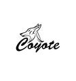 coyote head vector image