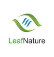leaf nature logo vector image