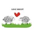 Love sheep vector image
