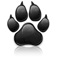 black paw vector image