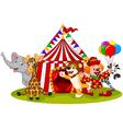 Cartoon happy animal circus and clown vector image