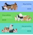 Dog Training Walking Grooming Banners Set vector image