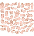 Baby Hands Pack vector image