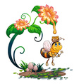 Bee collecting honey from the flower vector image vector image