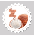 Sticker template Healthy and fresh coconut vector image