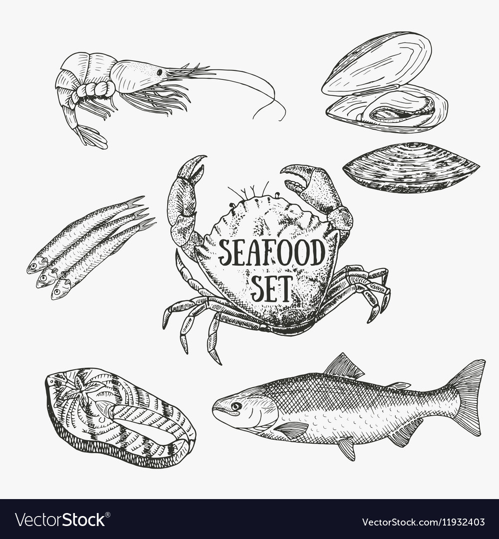 Creative seafood set sketch vector