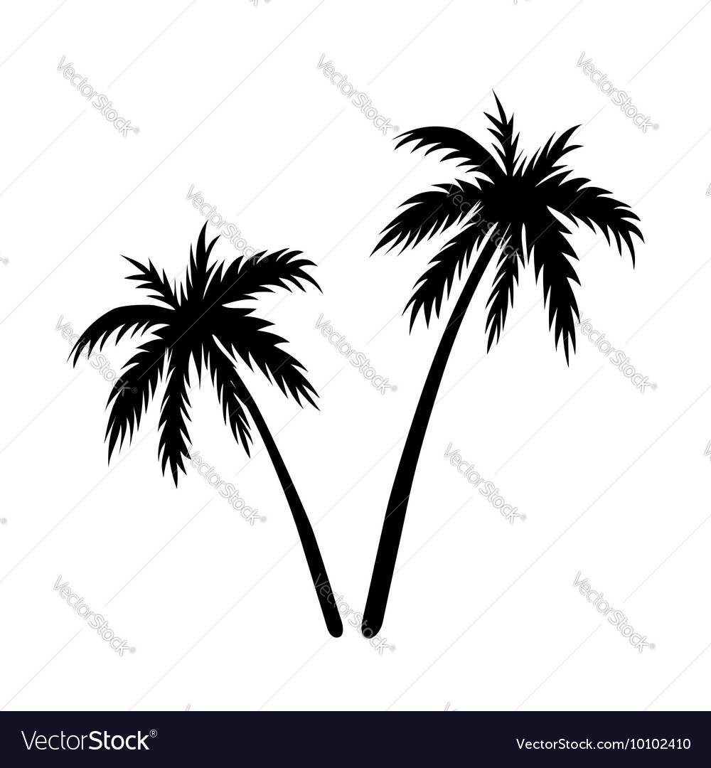 Two palms sketch vector
