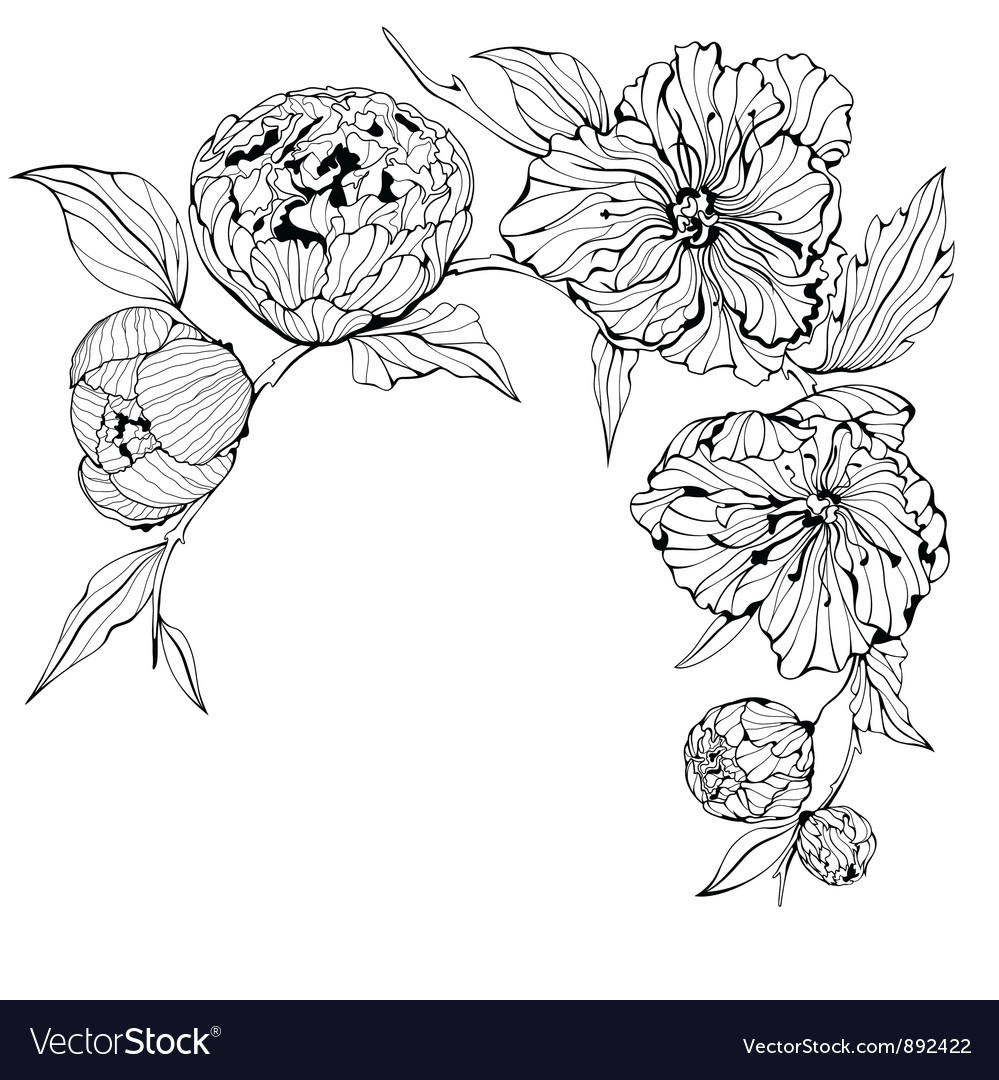 Black and white background with flowers vector