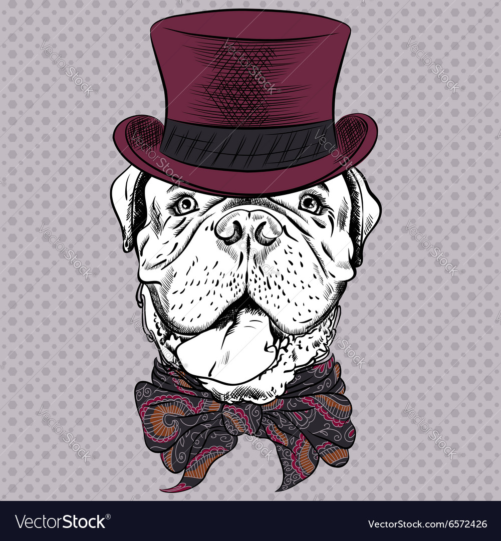 Funny cartoon hipster dog french mastiff vector