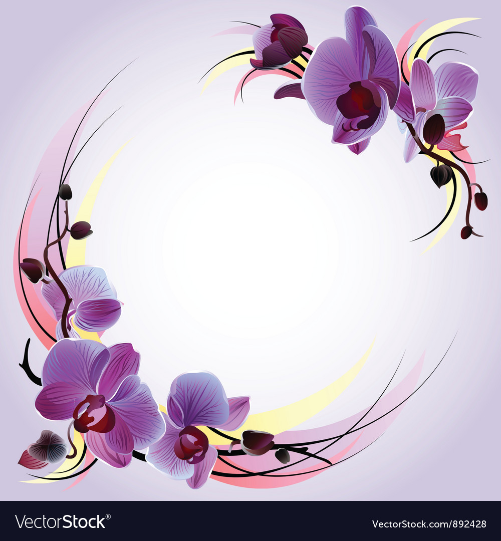 Greeting card with violet orchids vector