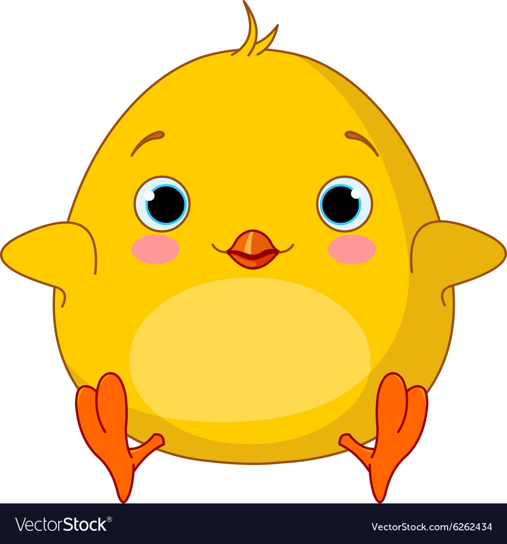 Yellow chick vector