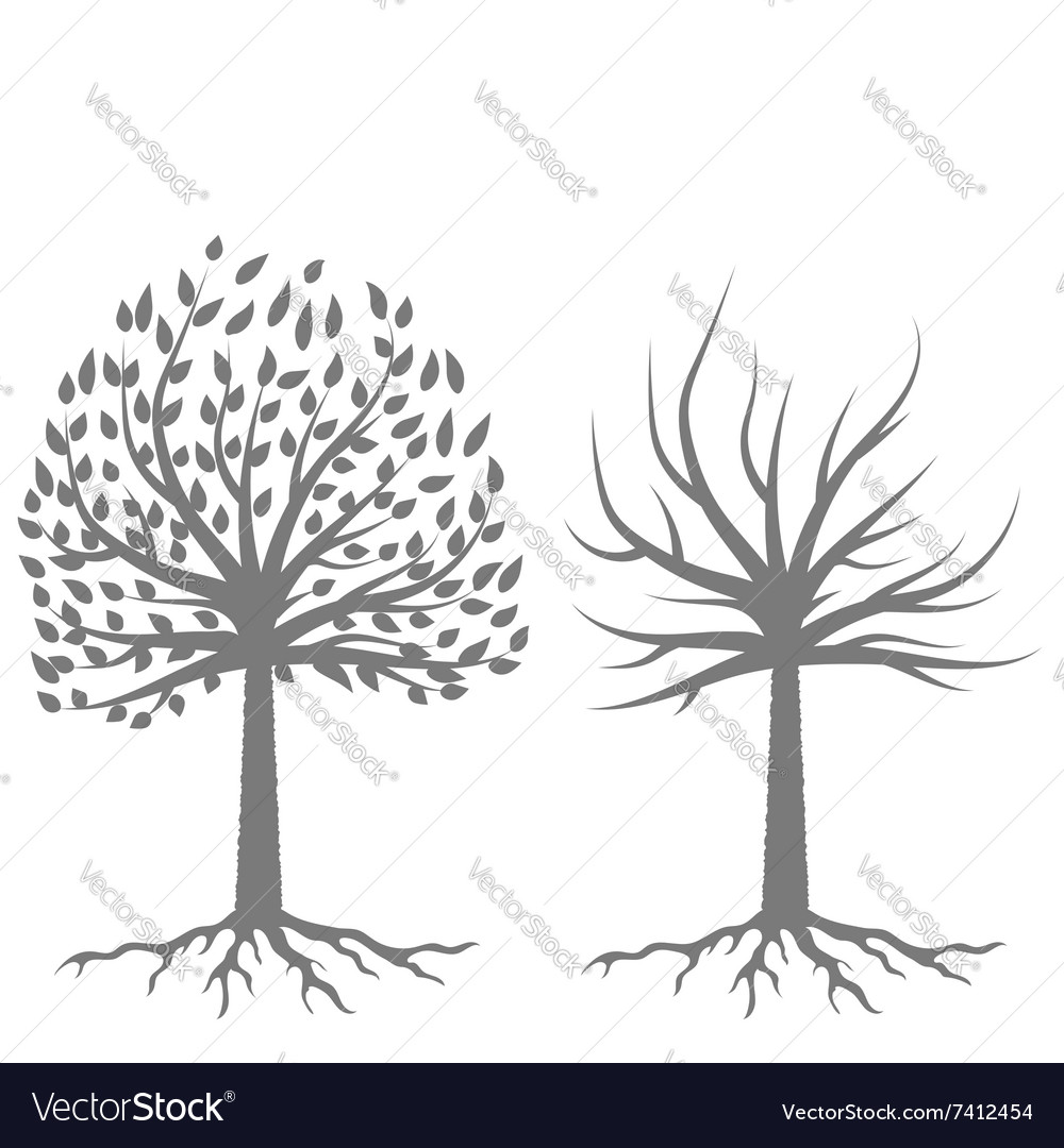 Two trees silhouettes vector