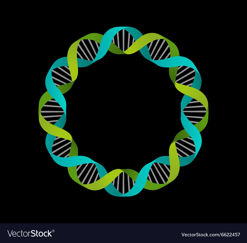 Dna genetic icon  circle background vector