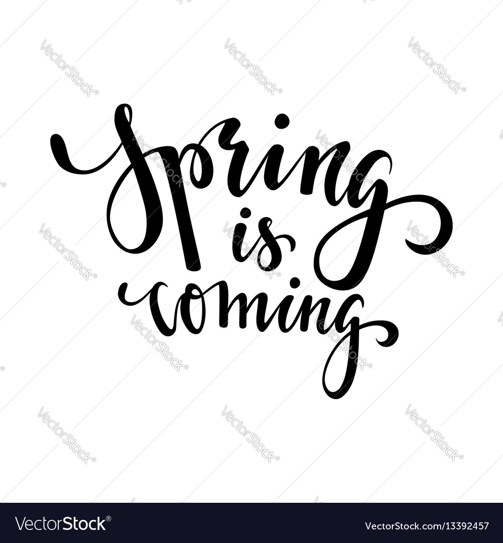 Spring is coming hand drawn calligraphy and brush vector